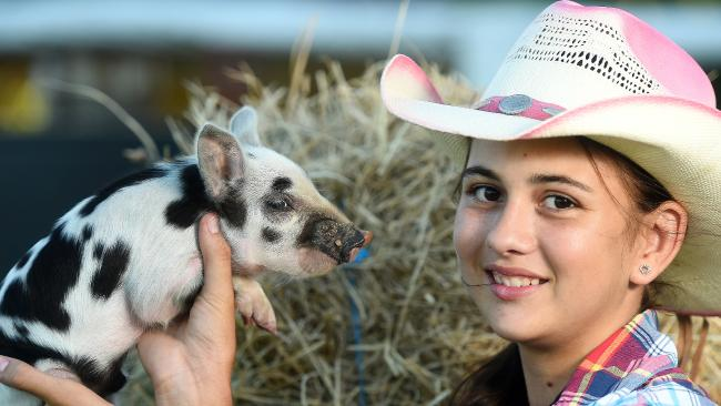 Girl and Little Piggy